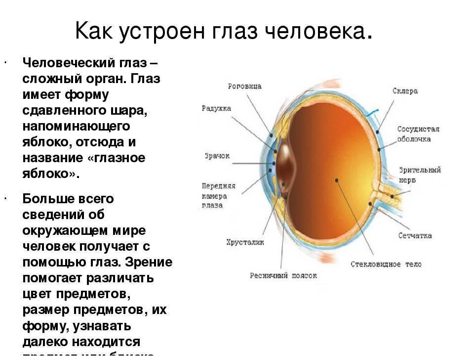 Сколько fps видит человеческий глаз » страница 2