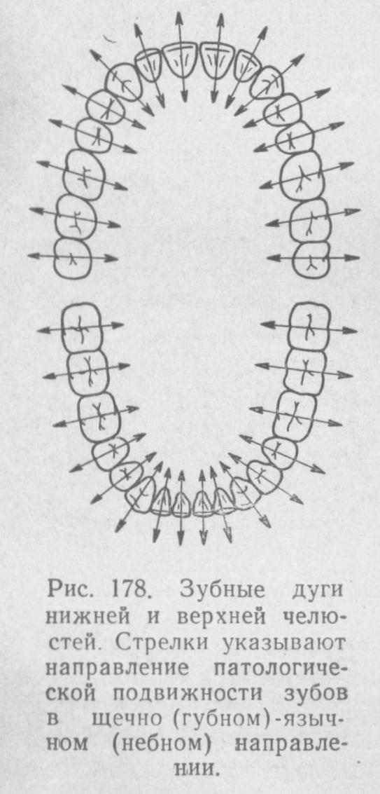 Лицевая дуга в стоматологии и её применение в стоматологии - много зубов