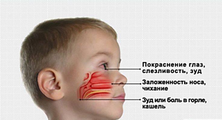 Сколько длится насморк у взрослого пациента и ребенка