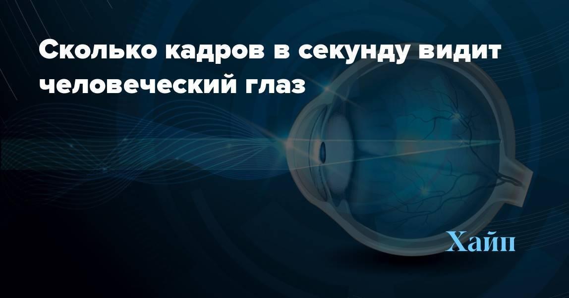сколько кадров воспринимает человеческий глаз