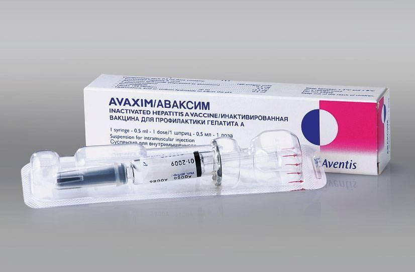 Прививка от гепатита а взрослым: схема вакицнации, эффективность вакцины, до какого возраста ее делают, противопоказания и побочные эффекты