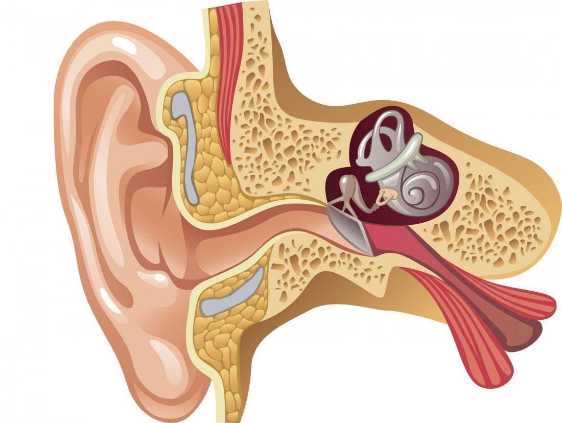 Кровотечение из уха: причины, симптомы, лечение