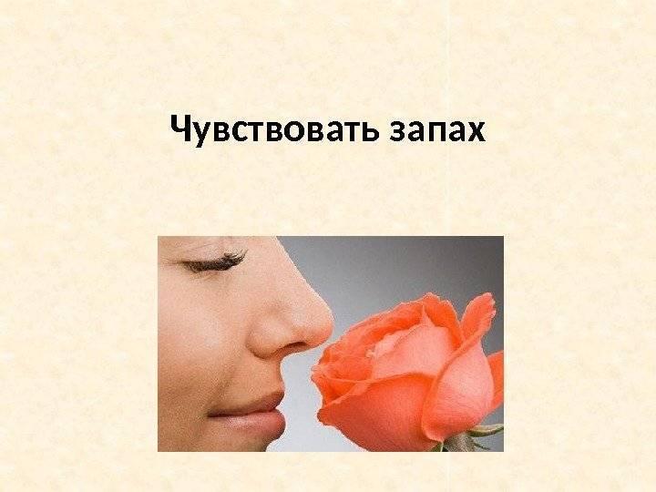 Что делать если при насморке пропало обоняние и вкус?