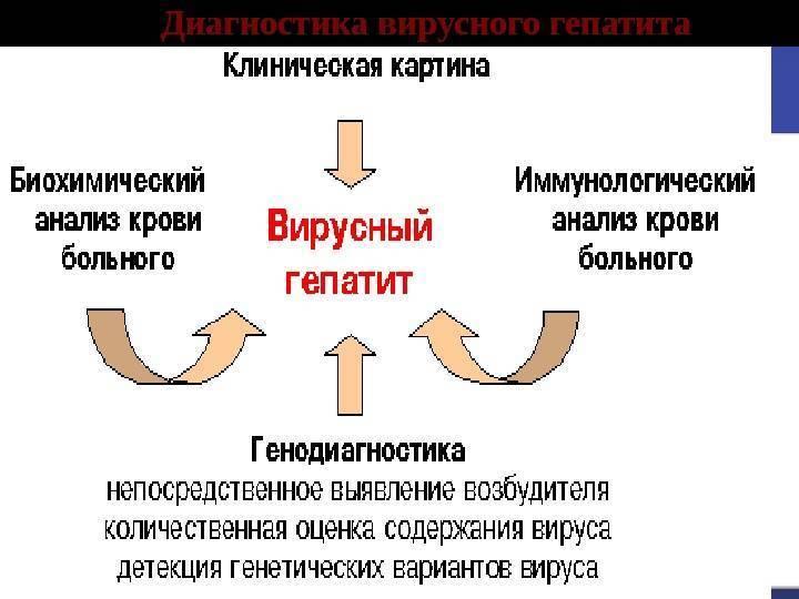 Как проводится анализ на гепатит в