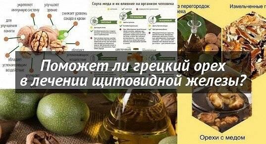 настойка грецкого ореха для щитовидки применение