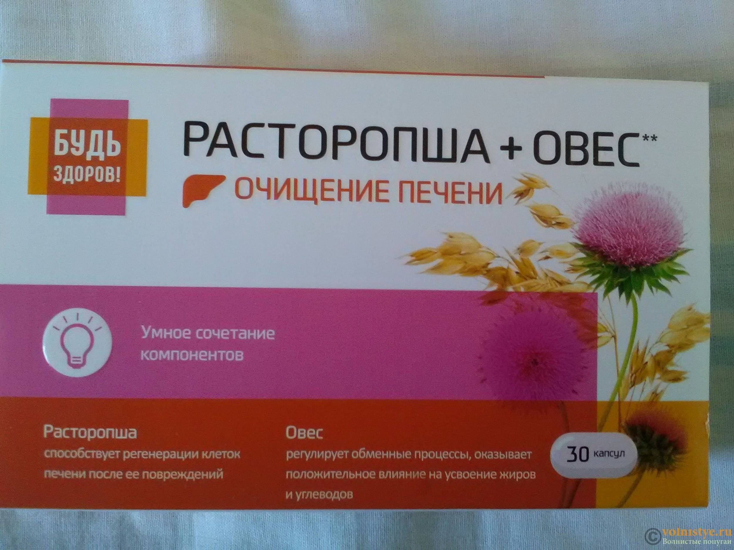 Польза расторопши для печени. лечение печени расторопшей — таблетки, шрот, порошок, масло, семена. как правильно принимать расторопшу для печени