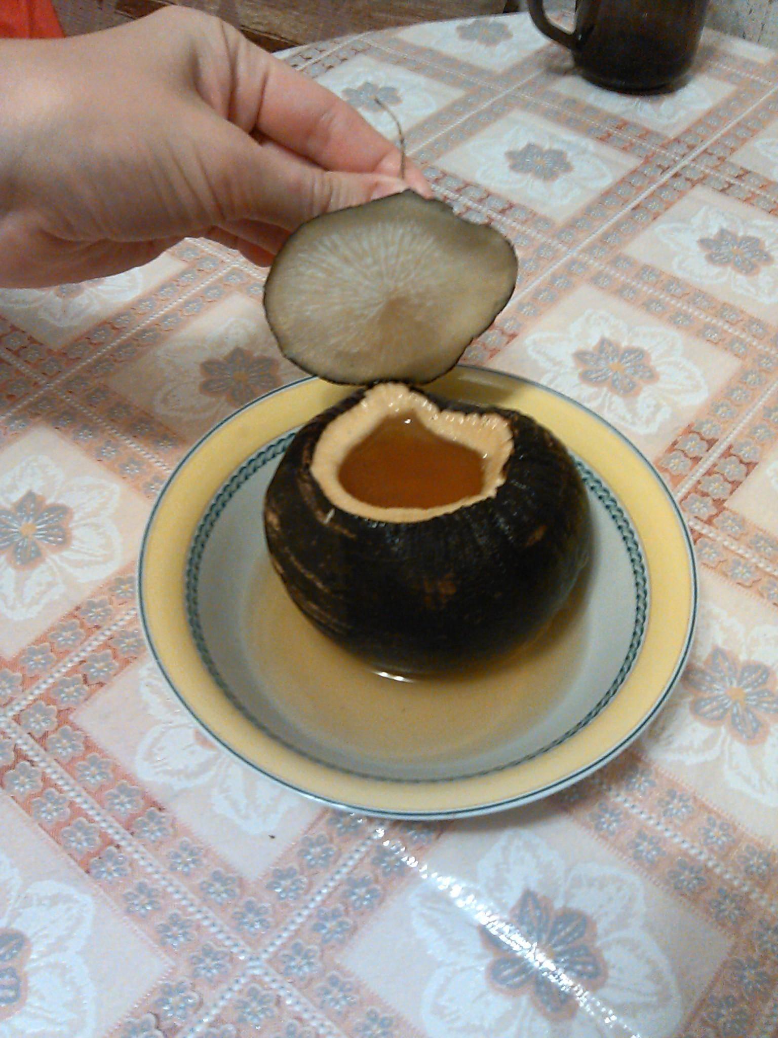 Черная редька с медом от кашля: рецепт и отзывы
