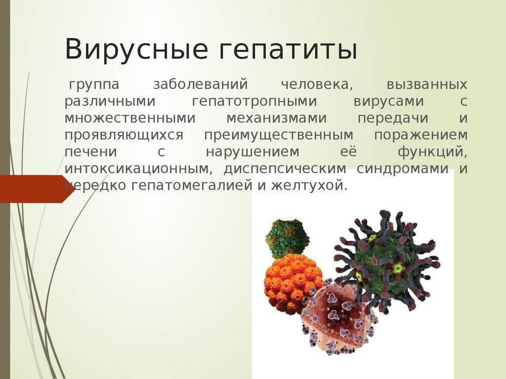 Анализ на вирусную нагрузку при гепатите с