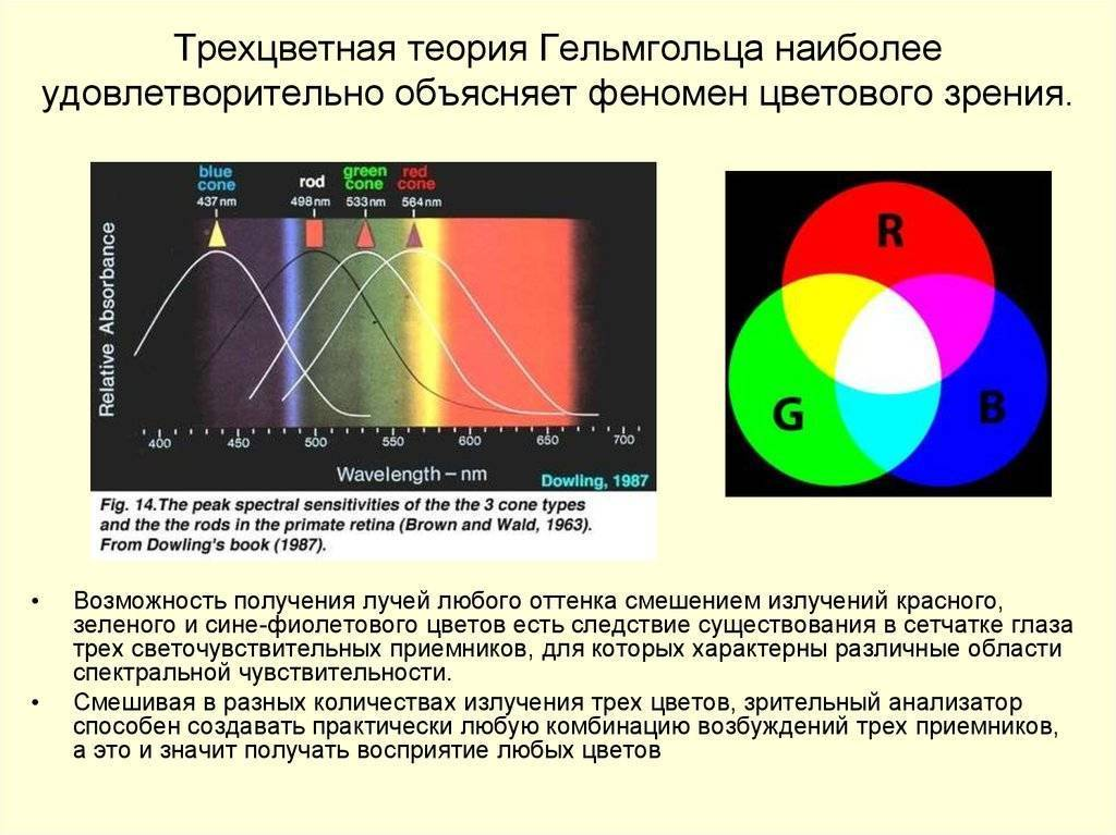 Нарушения цветового зрения