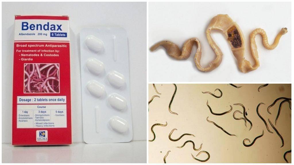 Препараты от паразитов широкого спектра действия