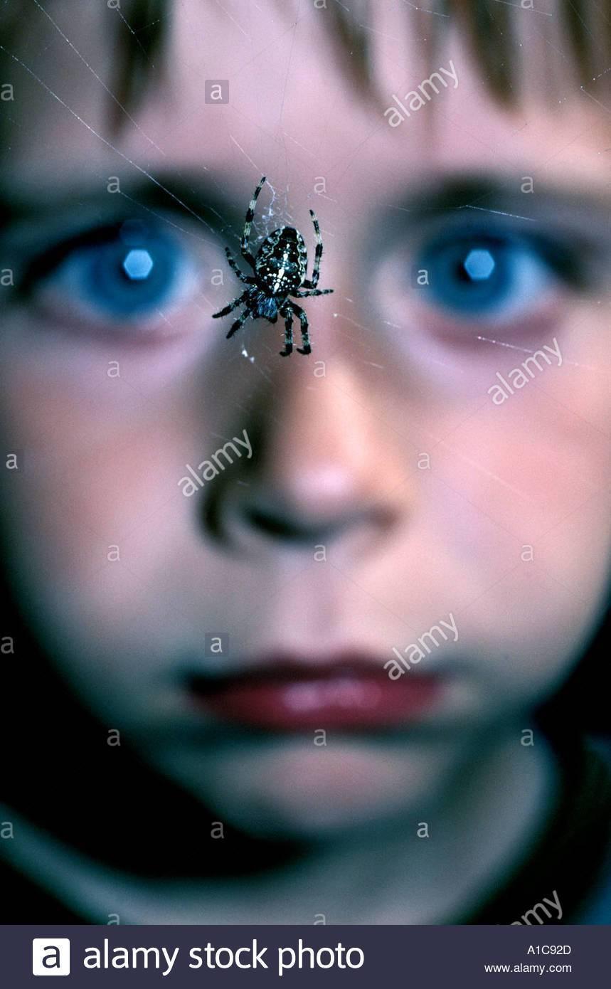 Энтомофобия – боязнь насекомых и пауков, симптомы и признаки