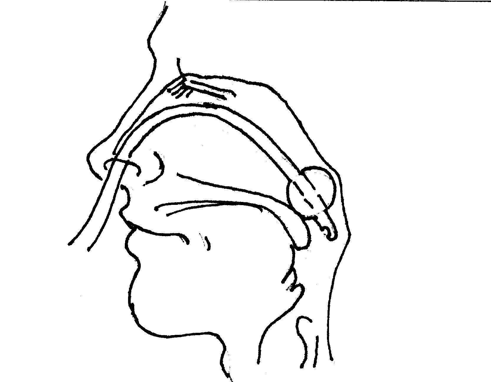 Что такое тампонада носа