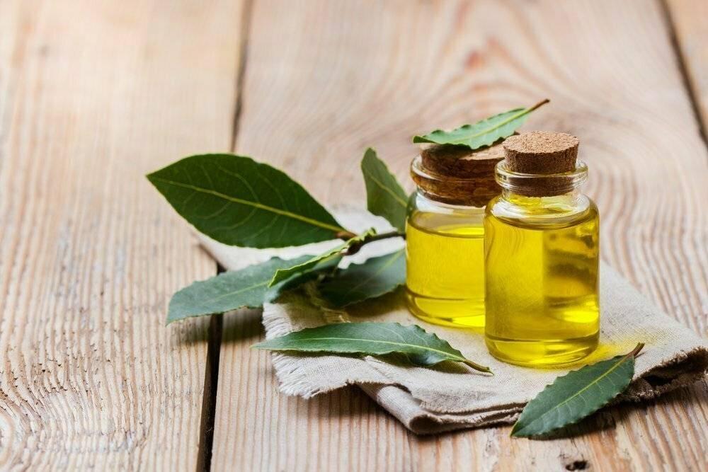Рецепт лечения гайморита лавровым листом