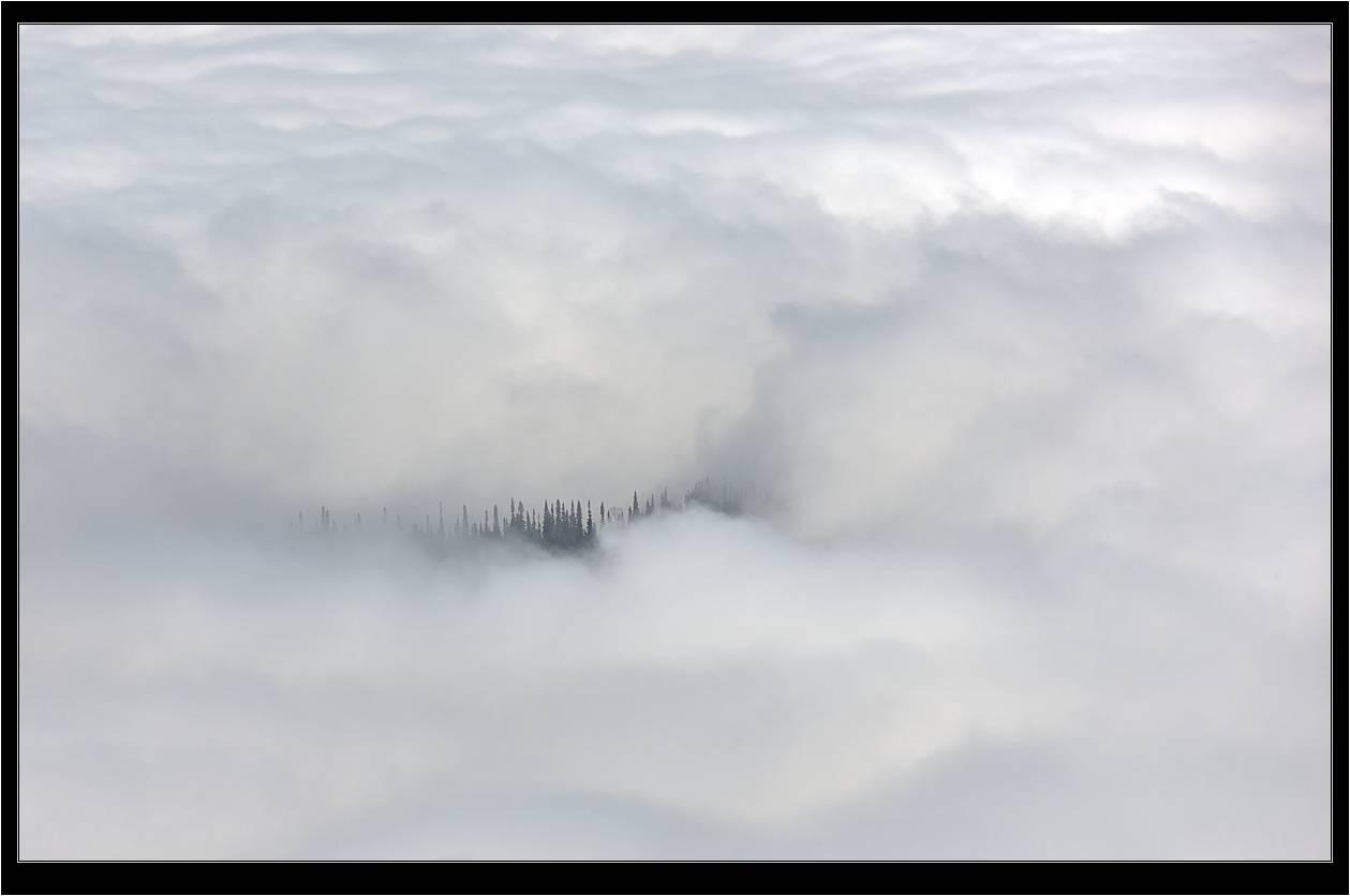туман в глазах