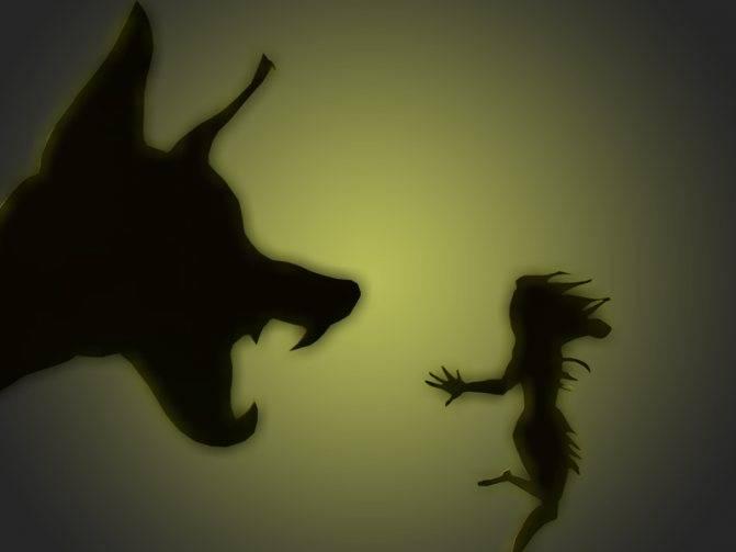 Кинофобия - как избавиться от страха собак?