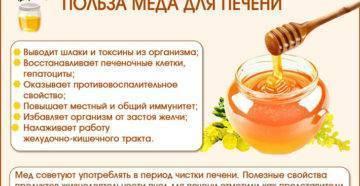 Использование меда для лечения печени и желчного пузыря