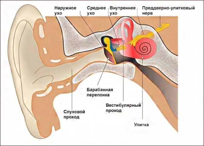 Болит ухо, наверное продуло ((((((