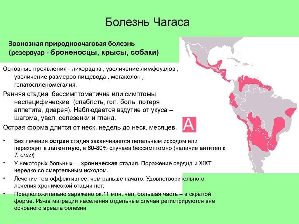 Американский трипаносомоз (болезнь шагаса)