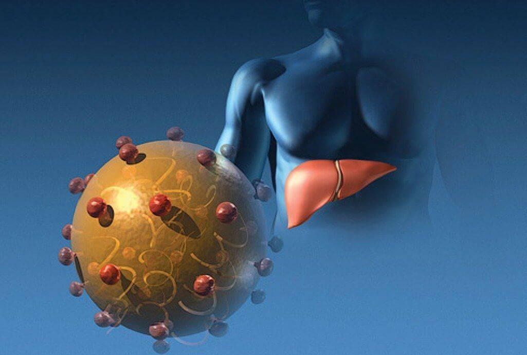 последняя стадия гепатита с