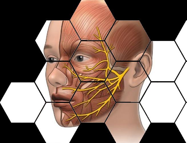 Воспаление носоресничного нерва симптомы и лечение
