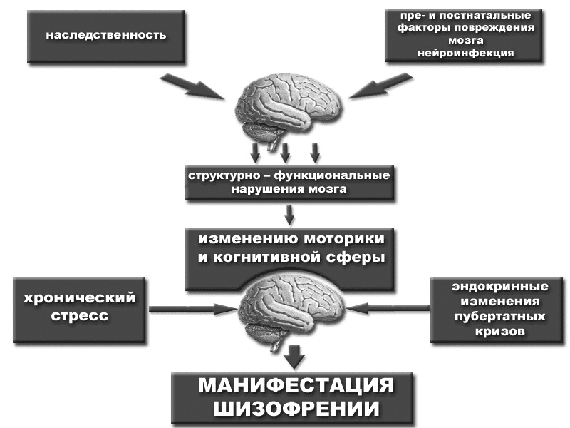Признаки шизофрении в поведении мужчин
