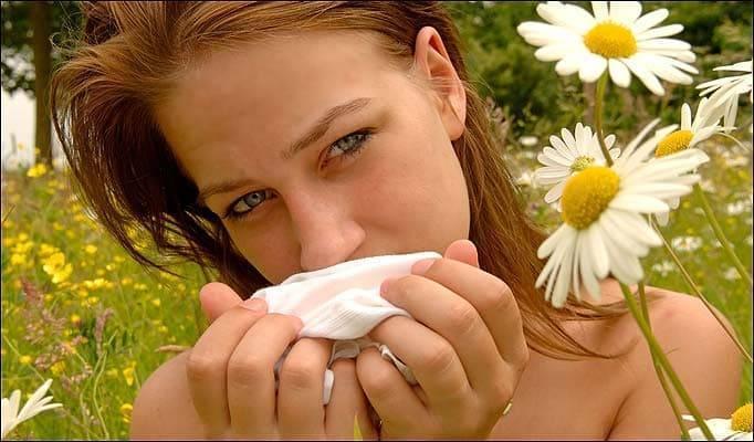 Для чего нужно полоскание горла ромашкой и насколько оно эффективно?