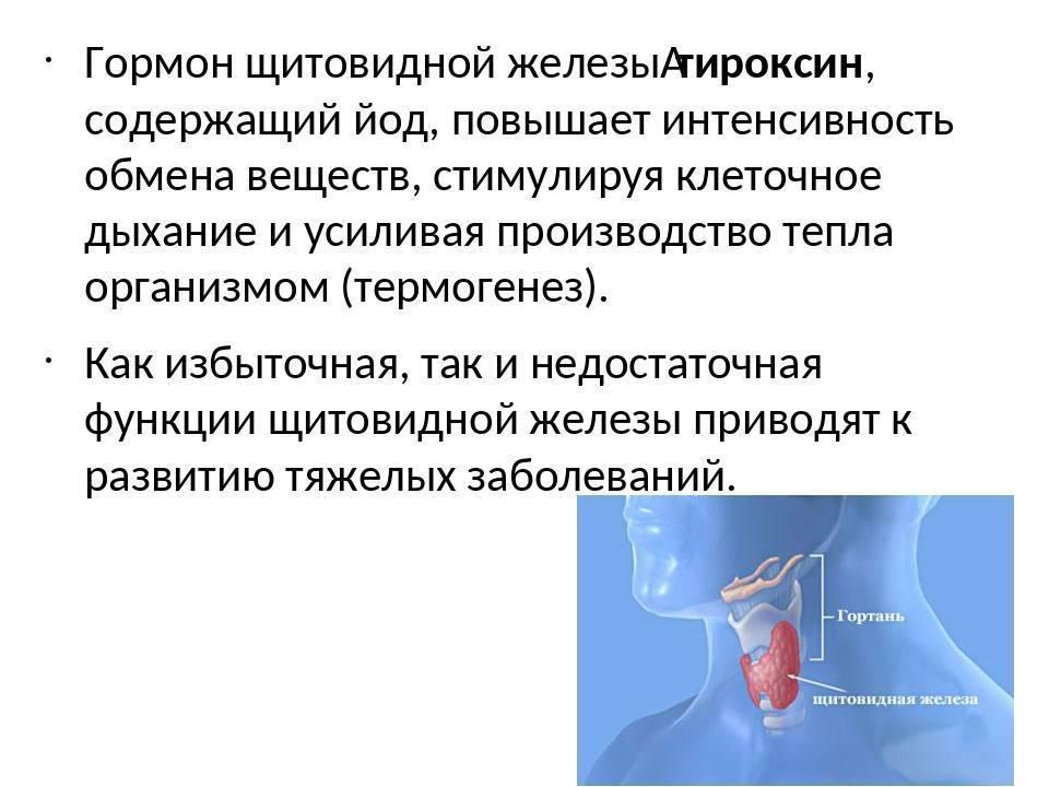 повышенные гормоны щитовидной железы