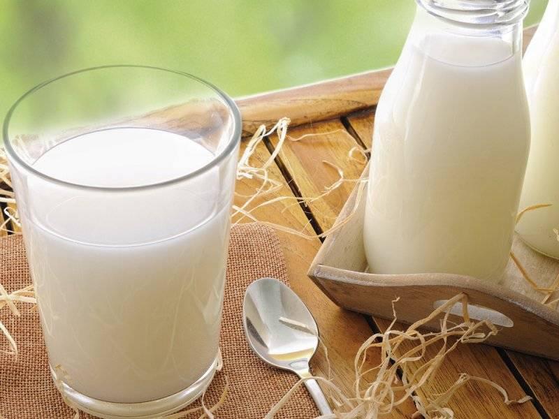Можно ли при ангине пить молоко и какие рецепты применять?