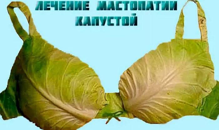Капустный лист для женской груди