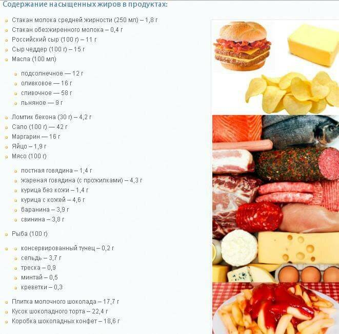 насыщенные жиры холестерин
