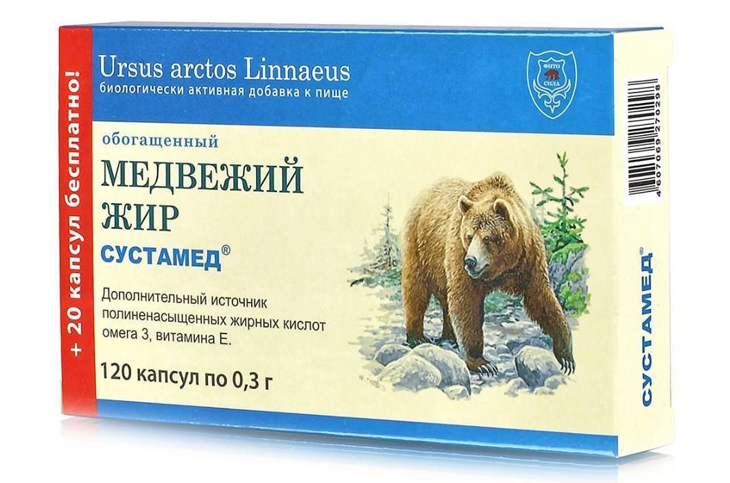 Медвежий жир от кашля – свойства и противопоказания