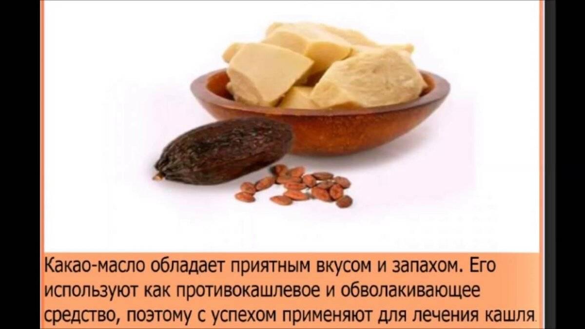Как принимать масло какао от кашля и бронхита