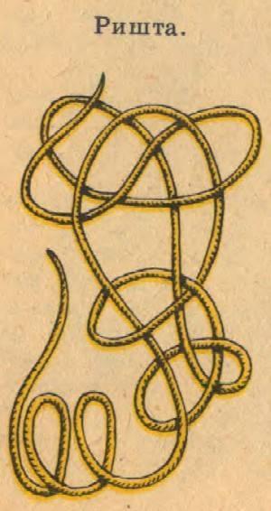 Симптоматика и лечение дракункулеза (червь ришта)