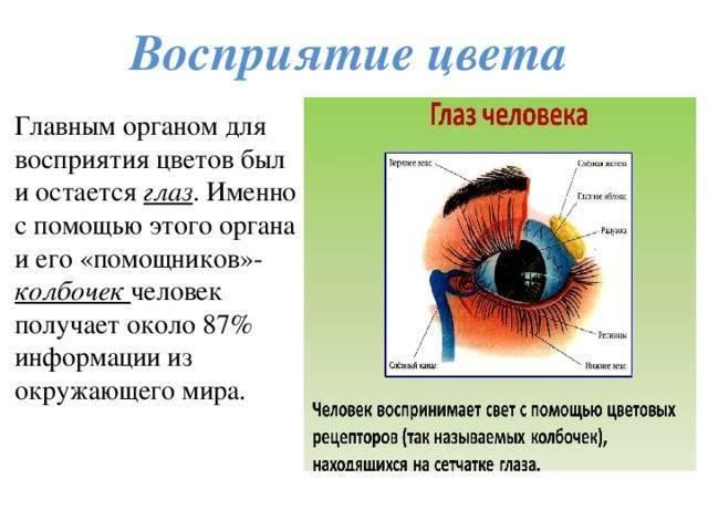 Троценко т  |  биология в вопросах и ответах | газета «биология» № 1/2000