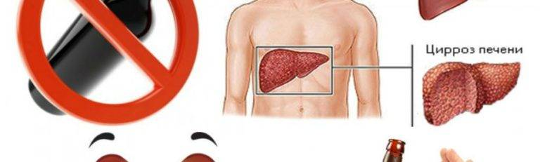 Эффективное лечение заболеваний печени народными средствами в домашних условиях: какими народными средствами лечить печень