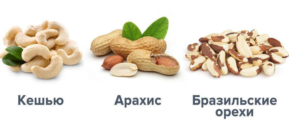Ценный состав грецкого ореха: как влияет на сердце и сосуды?