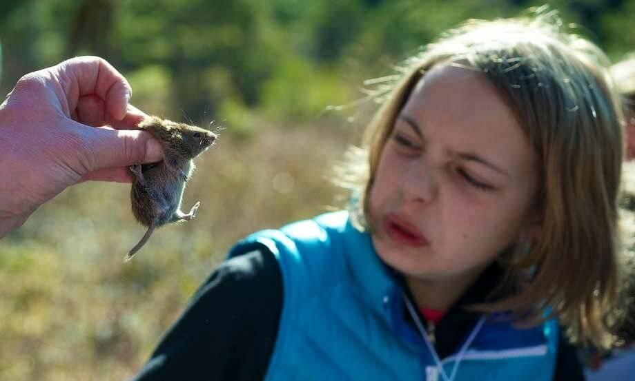Как побороть акрофобию и перестать бояться высоты: как избавиться взрослому