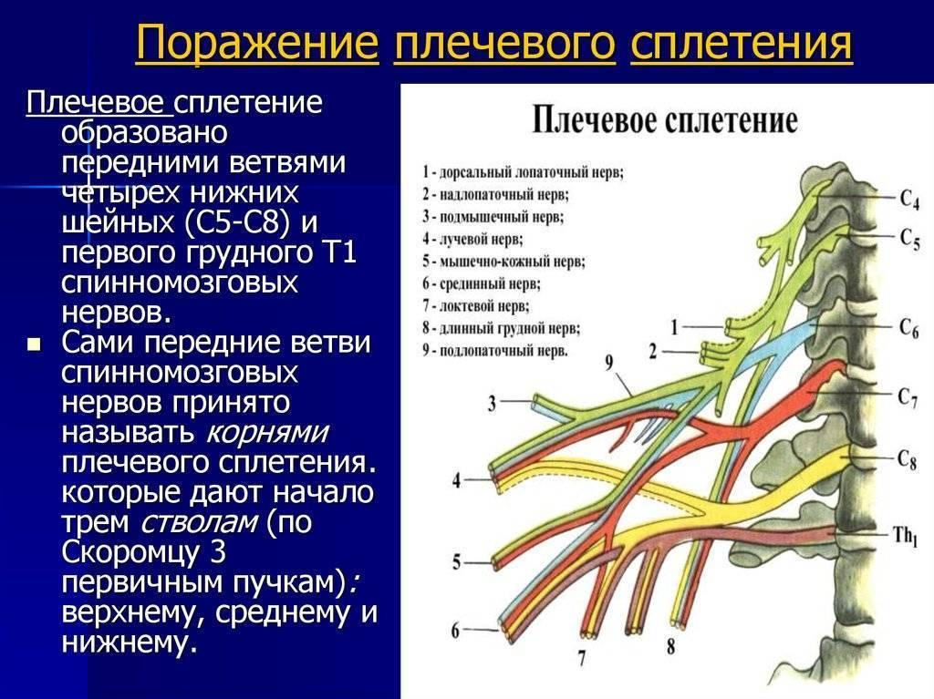 Методы лечения невралгии плечевого нерва