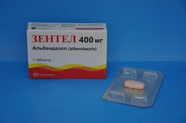 Бильтрицид для лечения описторхоза