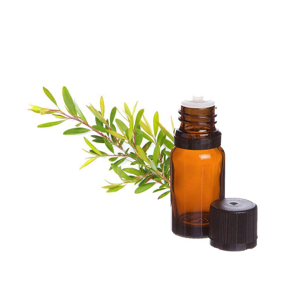 Как и от чего можно лечиться маслом чайного дерева?
