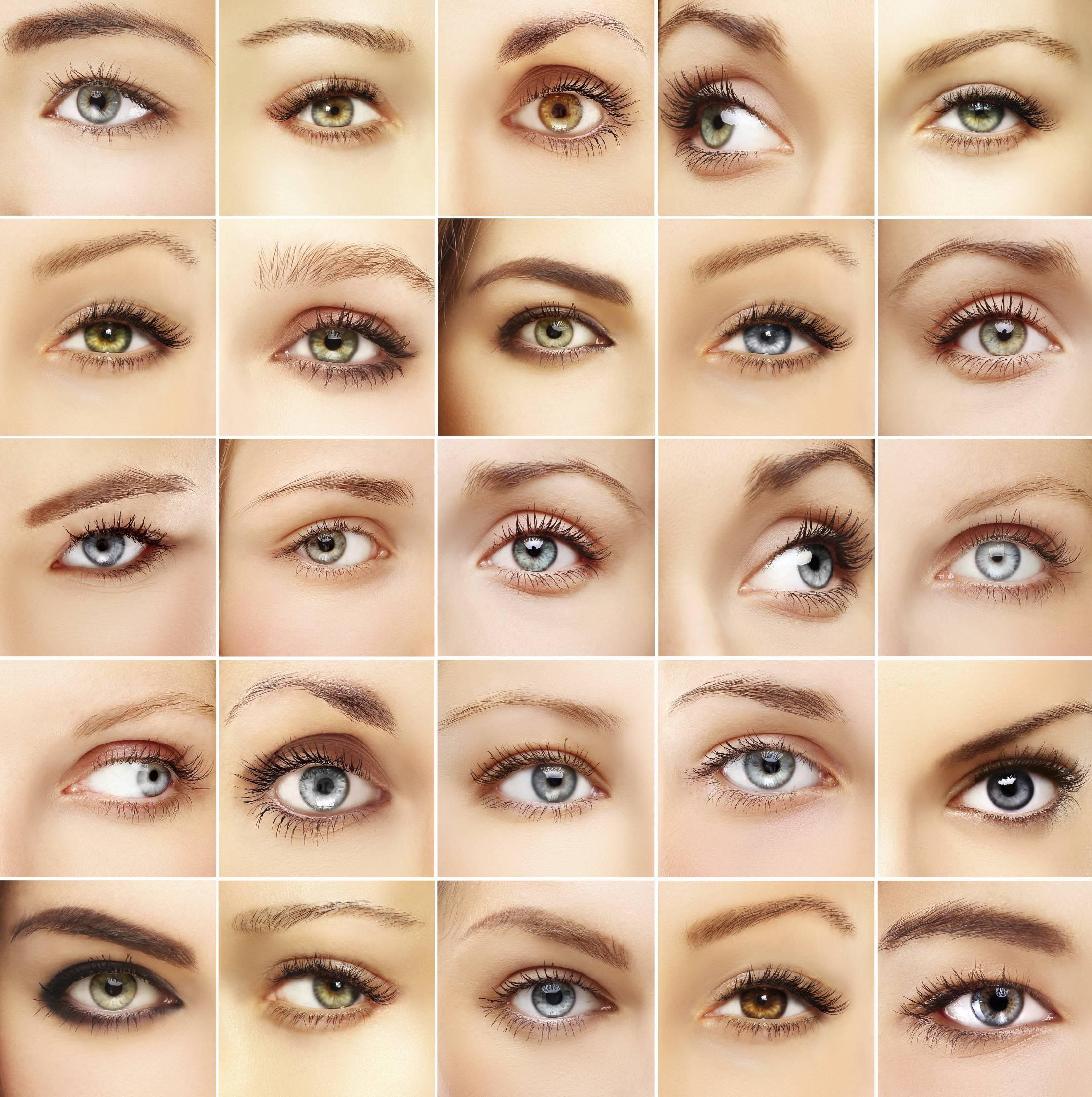 виды глаз человека