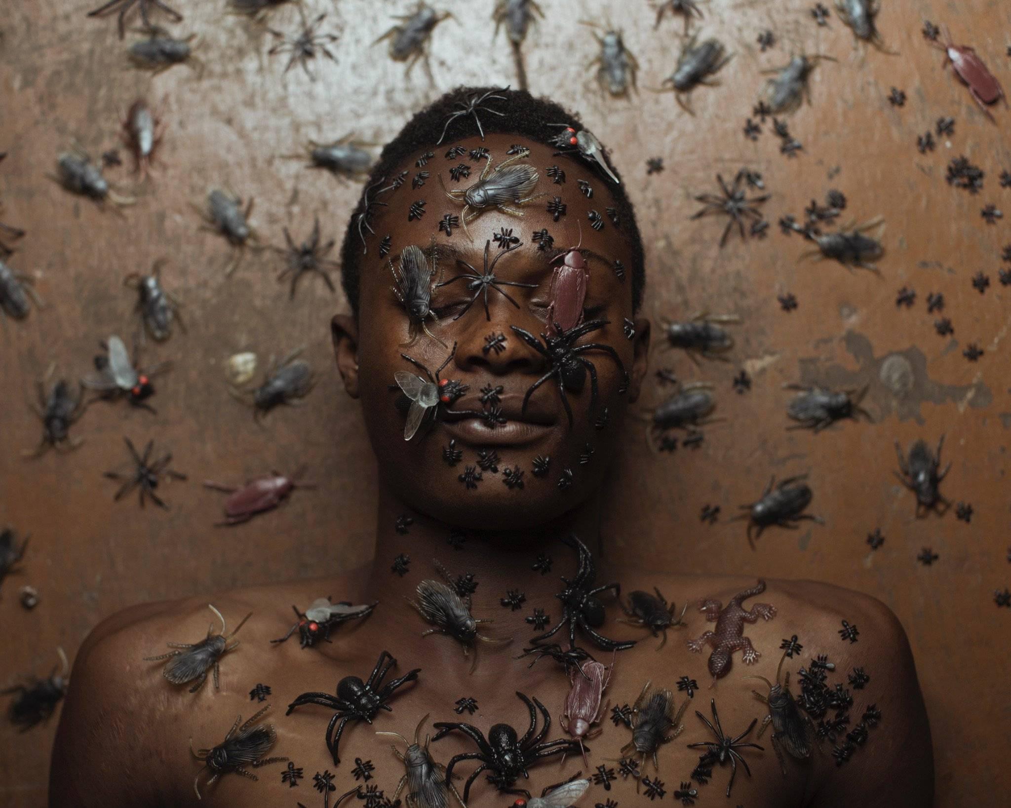 как называется боязнь насекомых
