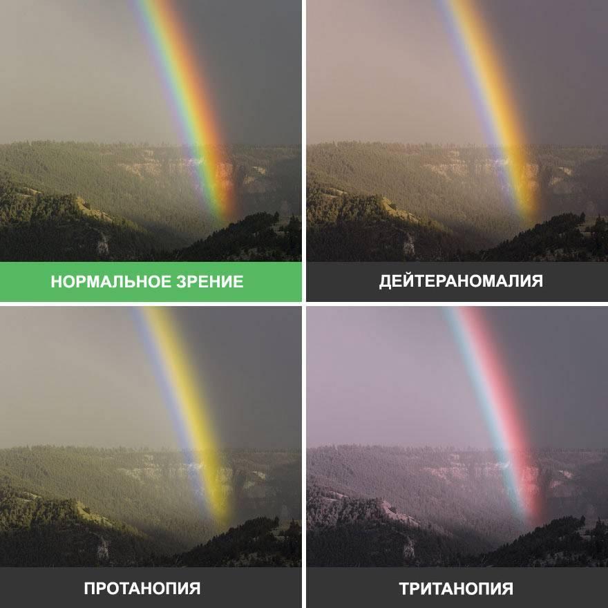 как видит дальтоник цвета