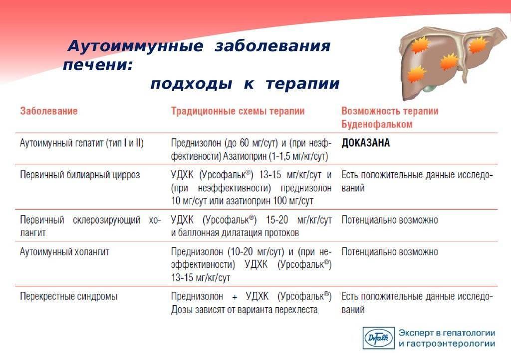 Особенности аутоиммунного гепатита