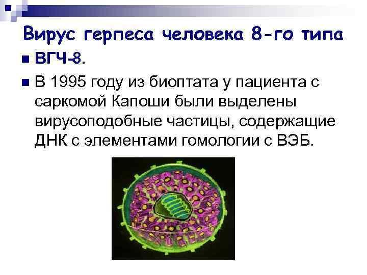 Герпес 7 типа: у детей и взрослых, симптомы и лечение вируса