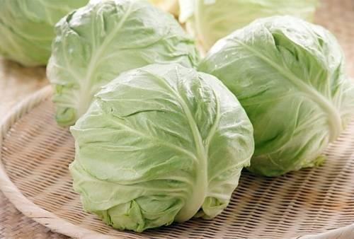 Как именно использовать капустные листья при мастопатии?