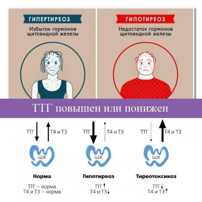Психология беременности: гормоны радости и горести
