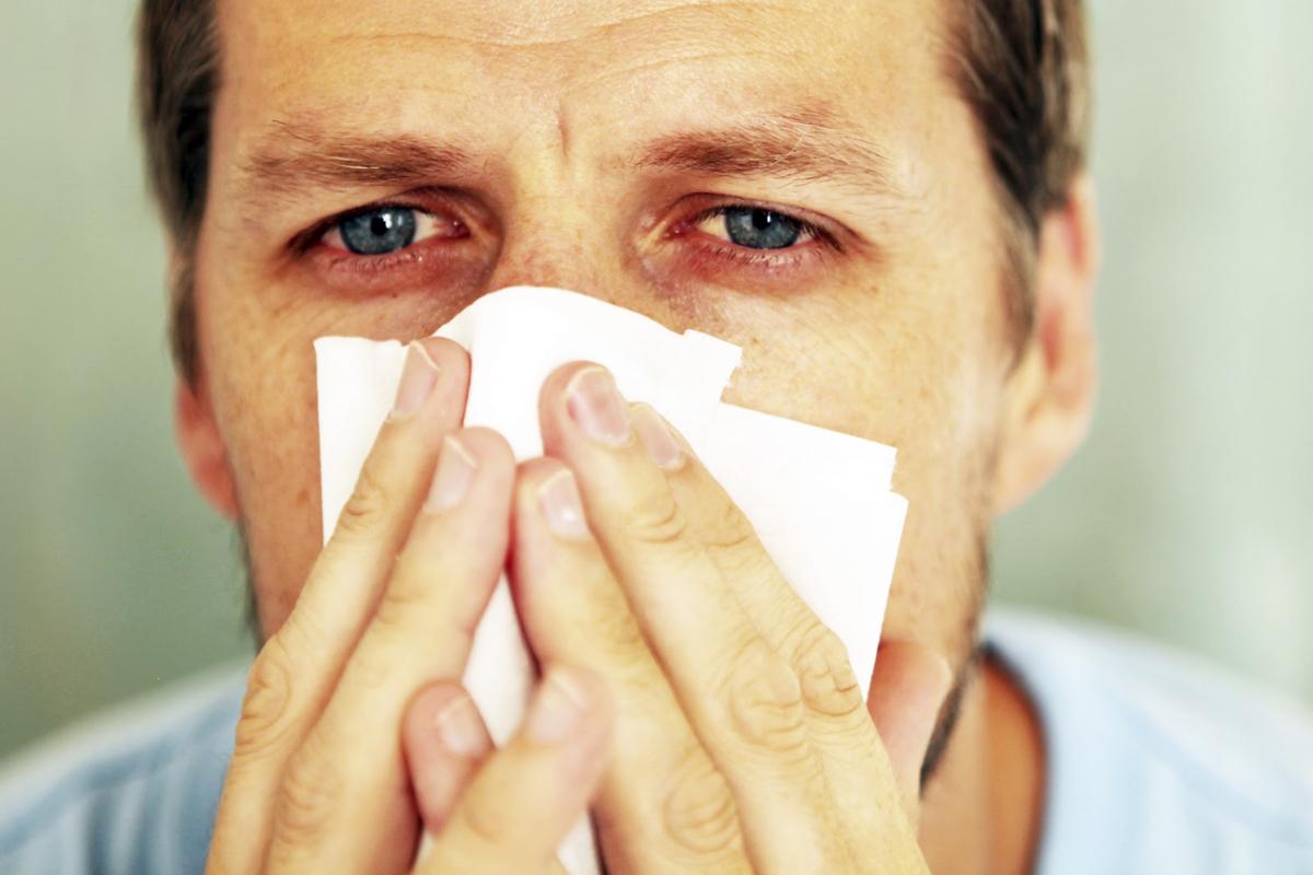 Чихание и насморк без температуры: лечение и причины