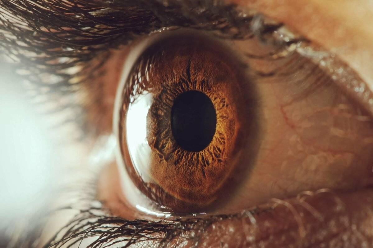 зрение глаз