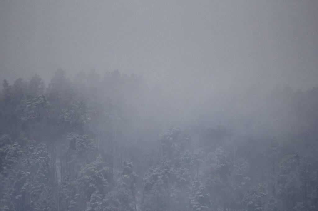 Болит глаз и голова от глаза в туман в глазу